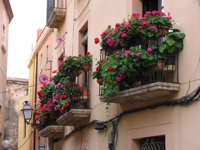 Цветы на французском балконе фото